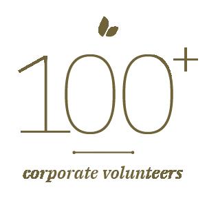 100+ Corporate Volunteers Stat