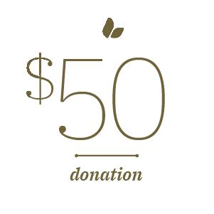 $50 Donation Stat